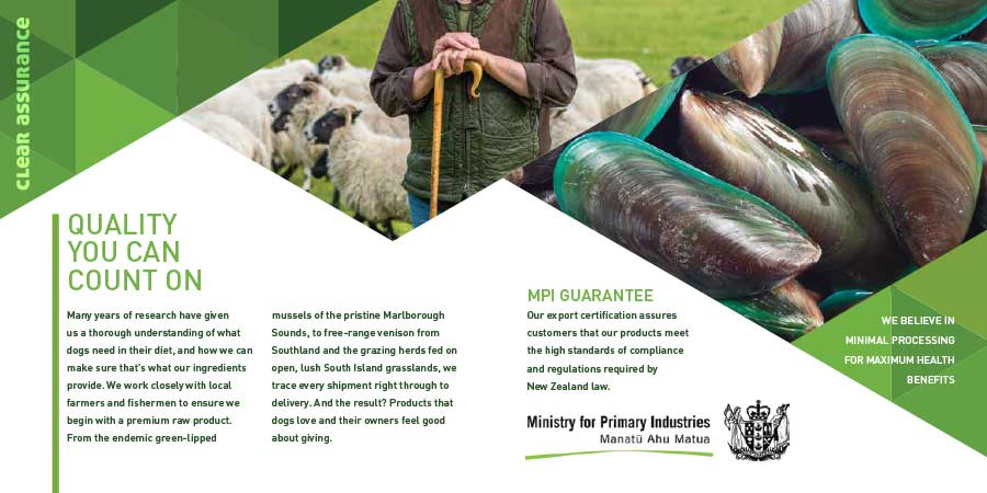 design and print of a brochure, new zealand