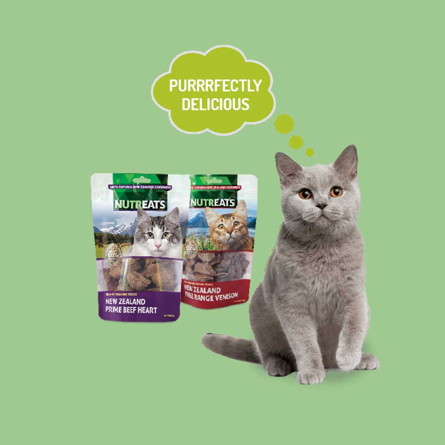 Pet food marketing and Facebook campaign